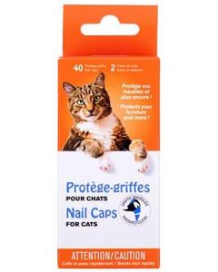 protège-griffes chat