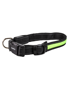 Collier POUR CHIEN au LED vert Night Walker Lifegear rechargeable