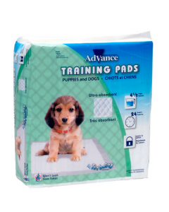 Pipi pads pour chien  advance ultra absorbant