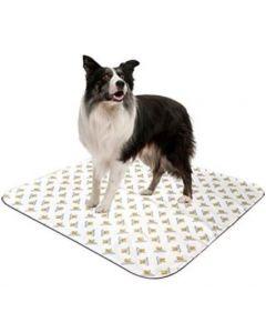 serviette reutilisable pipi pade chien