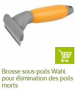 brosse mue chat