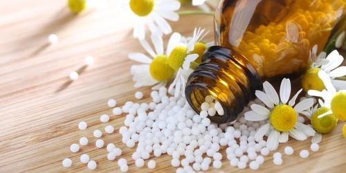 Homéopathie pour animaux