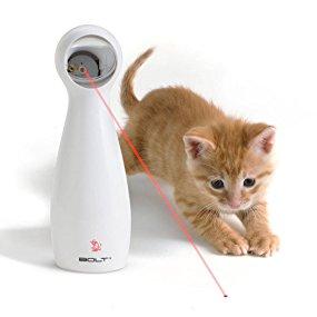jouet pour chat laser